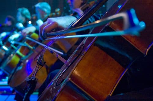 nightlife at the symphony with cello