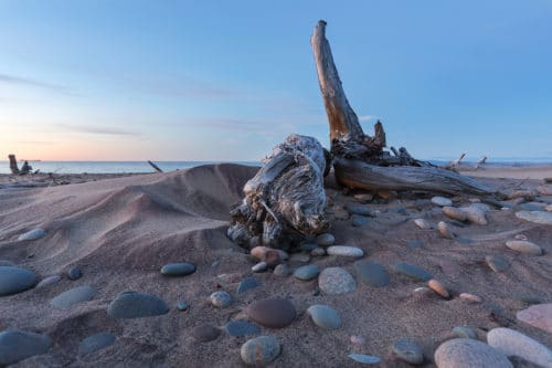 driftwood on the beach of the park point hike