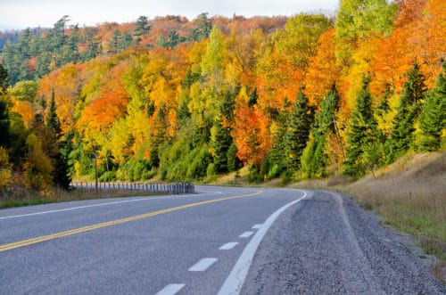 Fall Foliage along highway