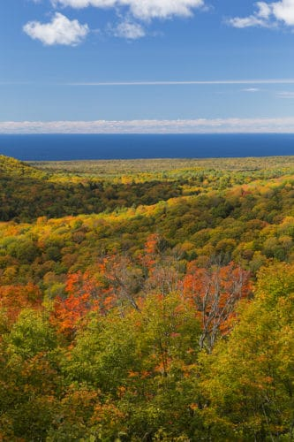 Come See the Fall Foliage in Duluth in 2019!