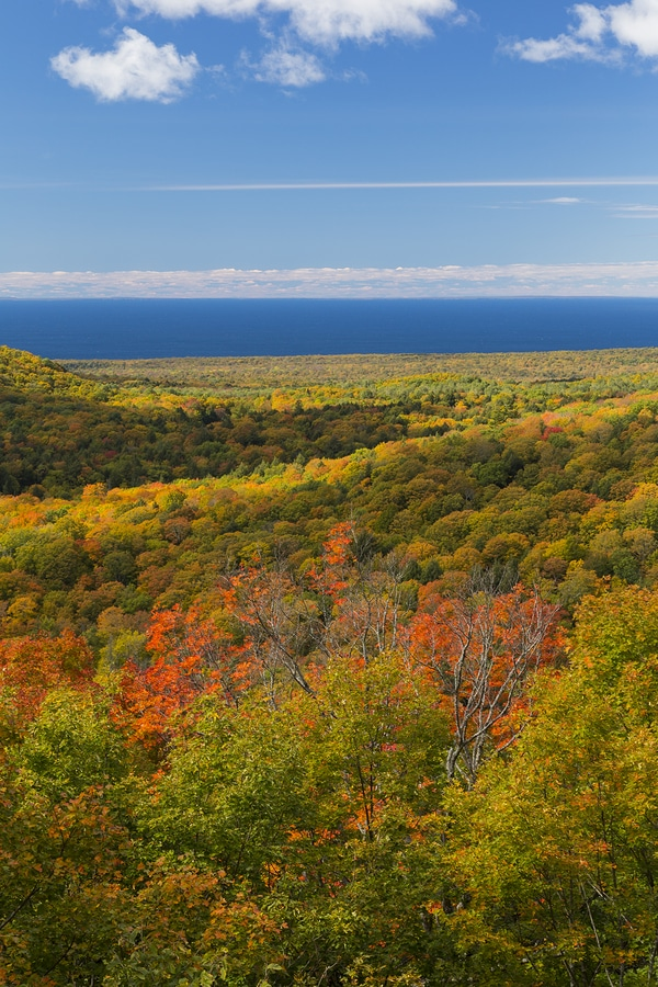 Plan Ahead for the Fall Foliage in Duluth